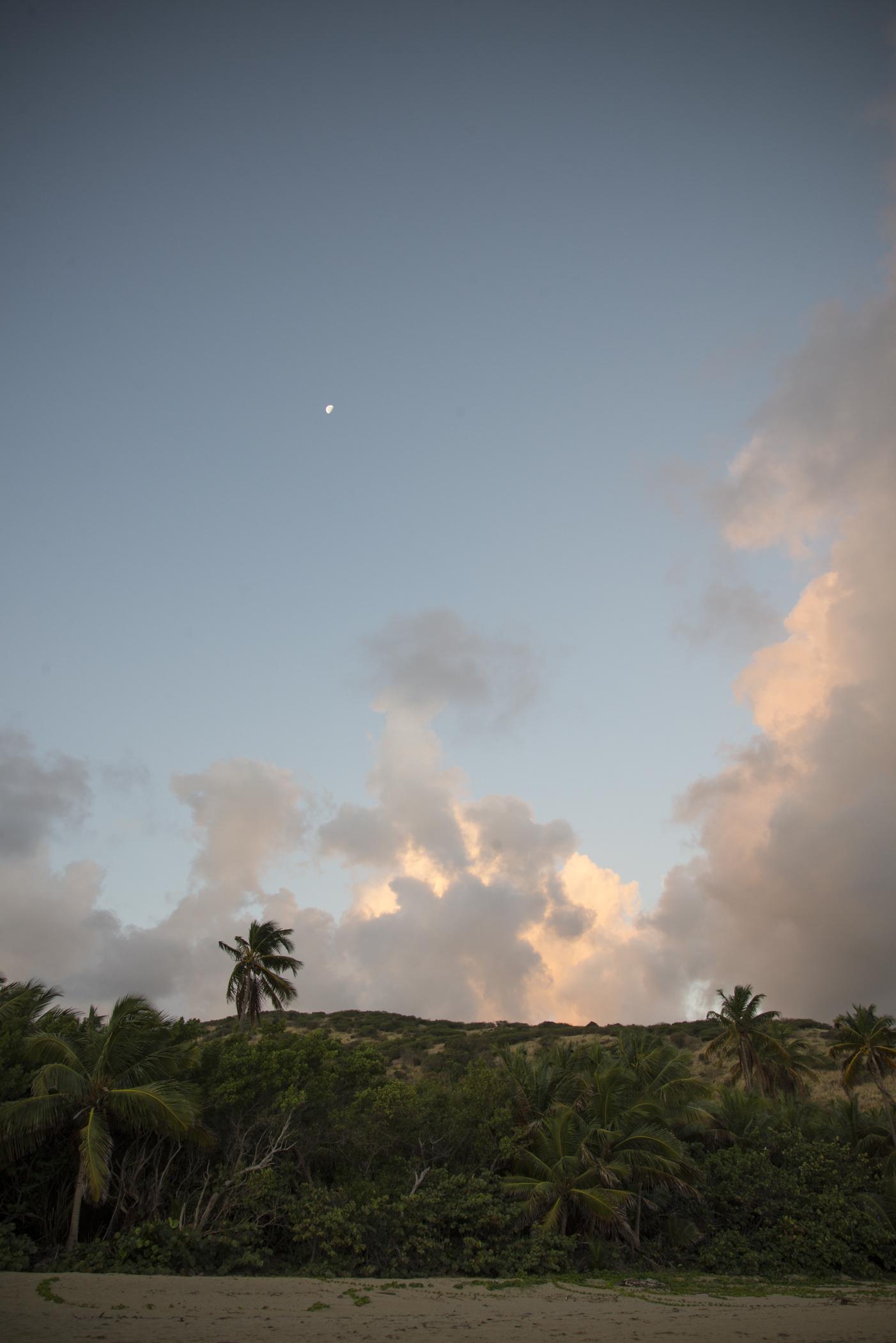 012014-Culebra-JuliaLuckettPhotography-103