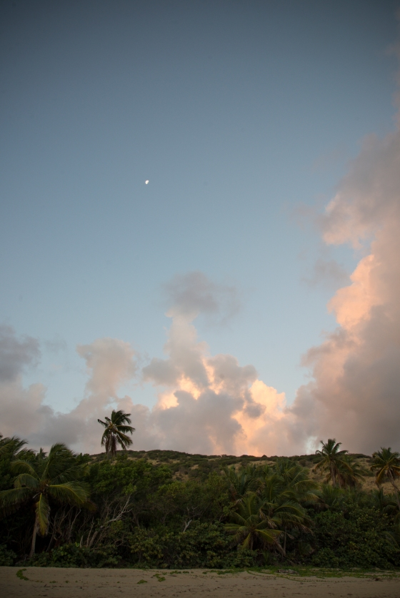 012014-Culebra-JuliaLuckettPhotography-103