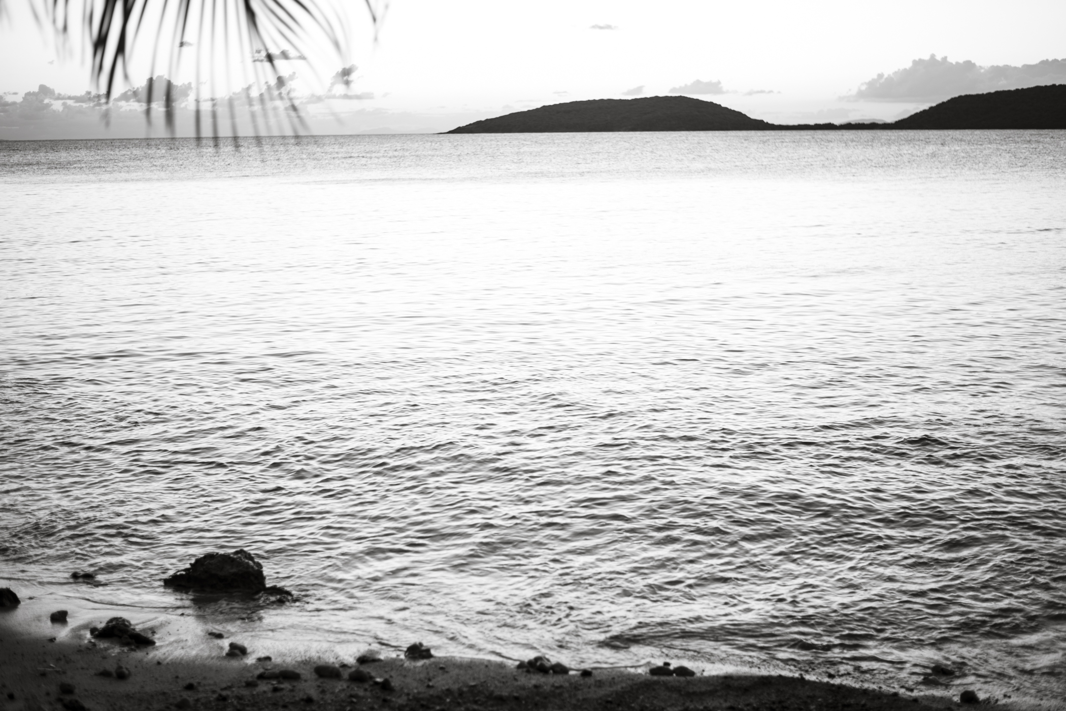 012014-Culebra-JuliaLuckettPhotography-37