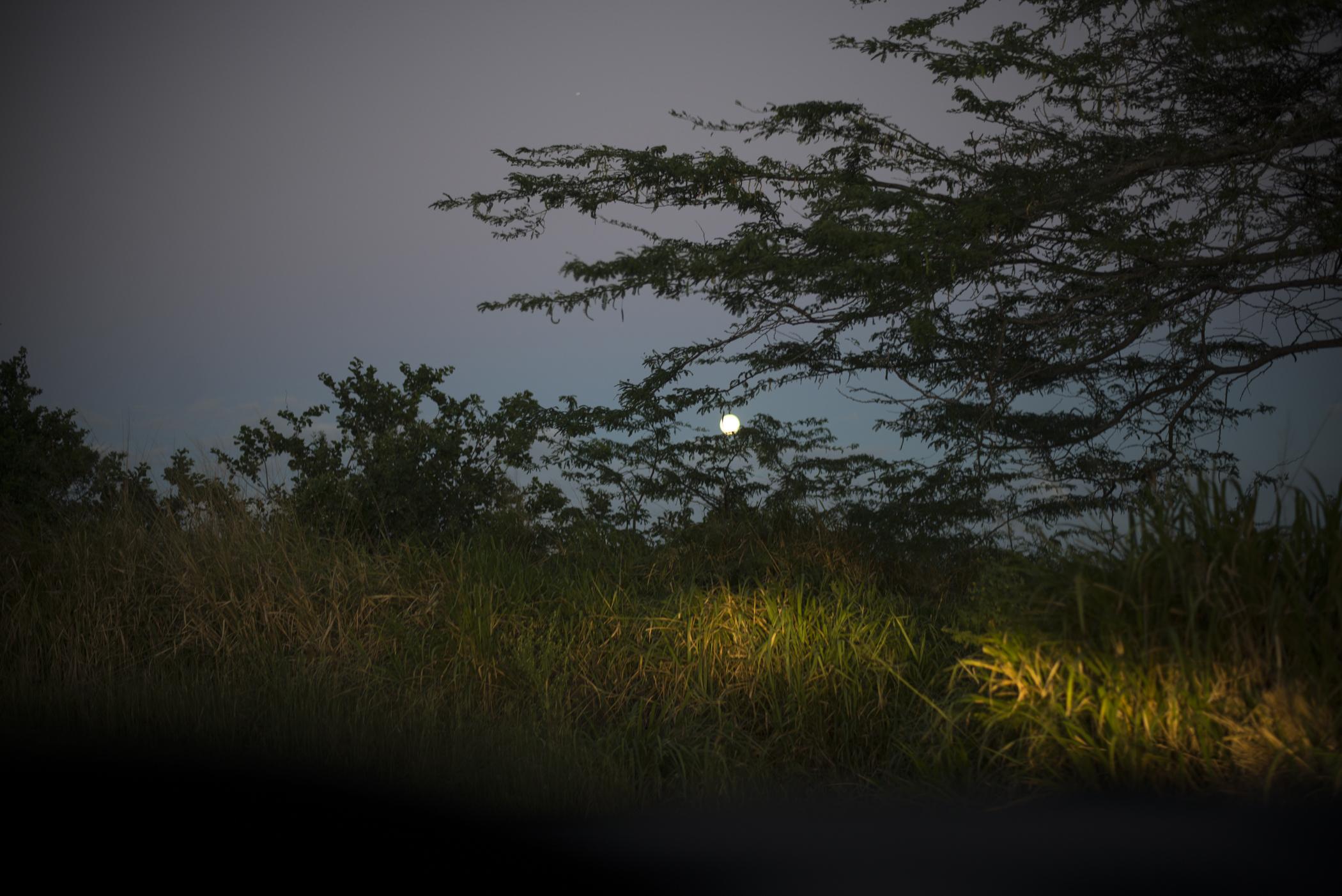 012014-Culebra-JuliaLuckettPhotography-40
