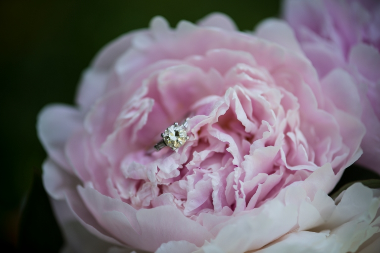 06272014-AsherRosaWedding-JuliaLuckettPhotography-25
